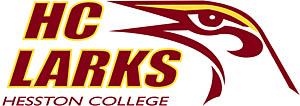 color Larks logo
